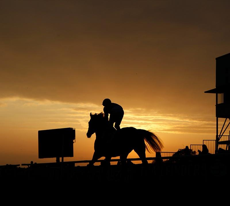 A silhouette of a horse and jockey as the sun sets.